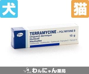 テラマイシン眼軟膏